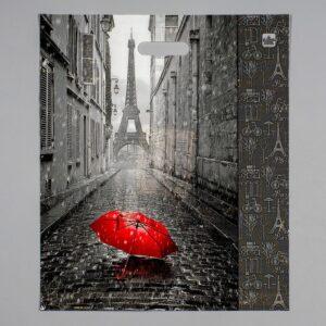 """Пакет """"Мой Париж"""" 60 мкм 55153"""