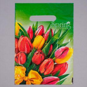 """Пакет """"Весна"""", с ручкой, 20 х 30 см, 30 мкм 55151"""